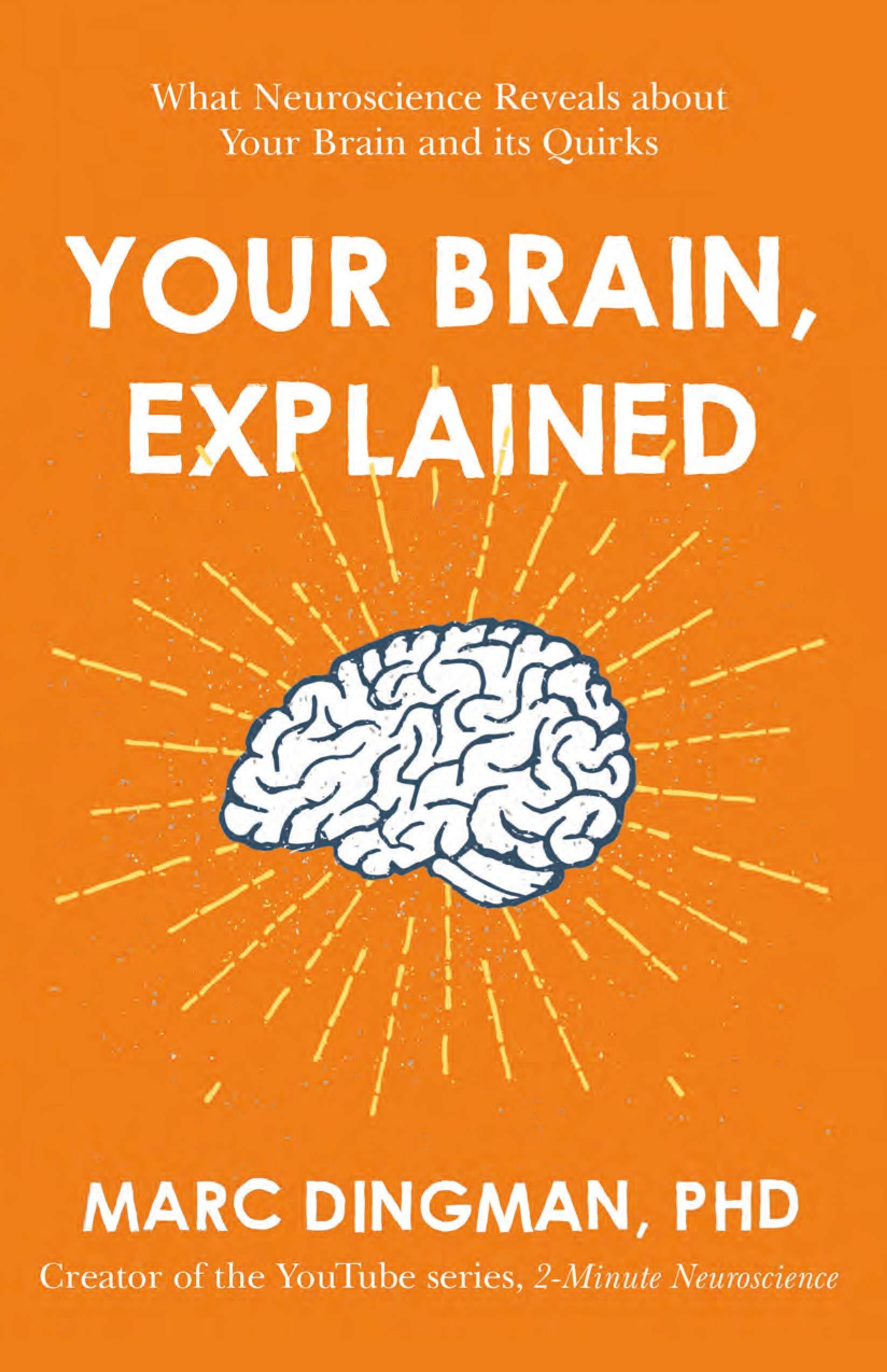 BrainExplained